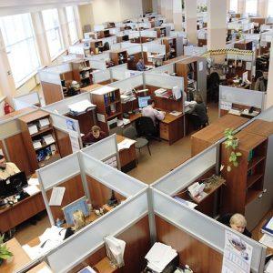 Kebiasaan Para Pekerja di 6 Negara Paling Produktif di Dunia